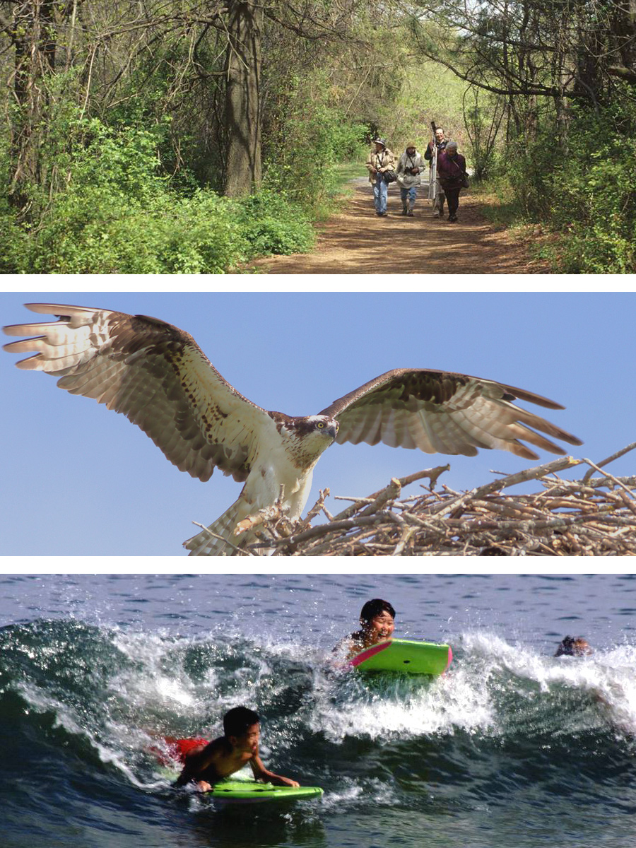 Hiking, birding, body surfing at Gateway National Parks
