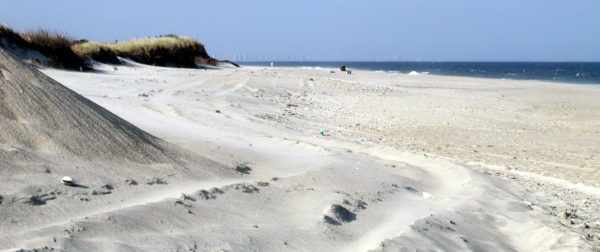 View of the white sand beach at Sandy Hook