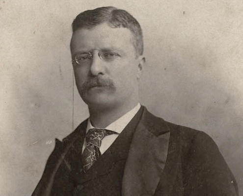 Portrait of a young Theodore Roosevelt